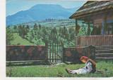 bnk cp Muntii Rodnei - Varful Pietrosul - necirculata