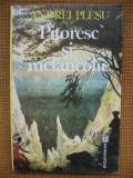 Andrei Plesu - Pitoresc si melancolie, Alta editura