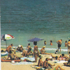 Bnk cp Eforie Nord - La plaja - uzata - Carte Postala Dobrogea dupa 1918, Circulata, Printata