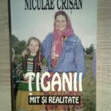 Niculae Crisan - Tiganii - mit si realitate (Editura Albatros, 1999) - Carte Sociologie