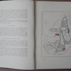 Dr.Petre Spanul,Herghelia nationala Bontida,Monografie,1928