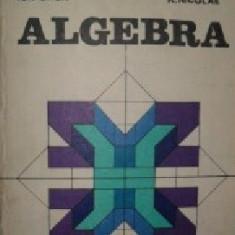Algebra de Ion D. Ion si R. Nicolae - Carte Matematica