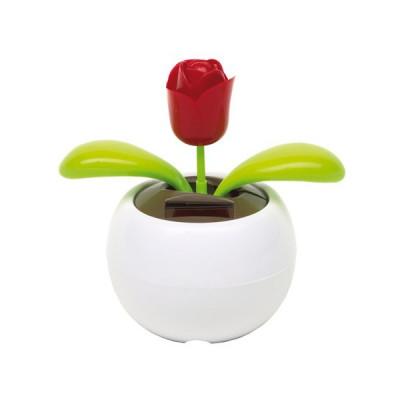 Floare solara decorativa Trandafir foto