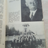 Fratii Minovici - N. Ioanid, B. Angelescu