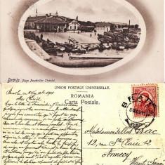 Braila- Piata. Pescariile statului-rara - Carte Postala Muntenia 1904-1918, Circulata, Printata