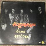 -Y- HOLOGRAF - BANII VORBESC - DISC VINIL LP - Muzica Rock