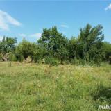 Teren - Teren de vanzare, 18500 mp, Teren extravilan
