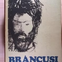 Nina Stanculescu – Brancusi