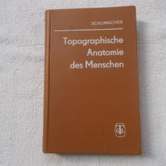 Topographische anatomie - Schumacher