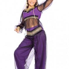 Costum de carnaval - Printesa Haremului