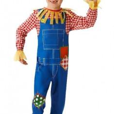 Costum de carnaval - Sperietoare de ciori - Costum carnaval