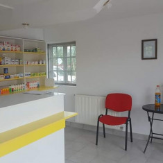 Licenta farmacie