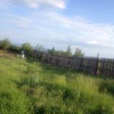 Teren Miroslava 1000mp - Teren de vanzare, Teren intravilan