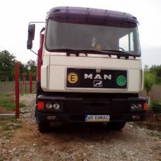 MAN19402 - Camion
