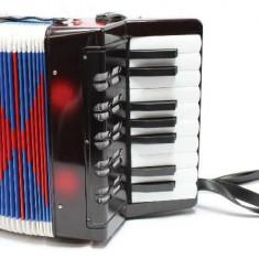Acordeon mare - Negru - Instrumente muzicale copii