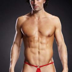 Bikini sexy tanga barbati S/M