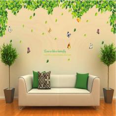 Decoratiuni perete - Frunze si fluturi