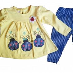 Set 2 piese - pantaloni si bluza - model buburuze - galben - 68 cm -> 86 cm