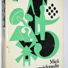 Mica enciclopedie a jocurilor - Milos Zapletal