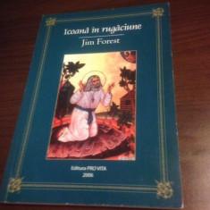 JIM FOREST, ICOANA IN RUGACIUNE. TRADUCERE DE IONUT MAVRICHI