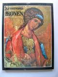Cumpara ieftin Icoane - Icoana  -  W. P. Theunissen.  Album format  mare.