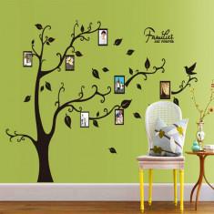 Sticker decorativ camera de zi - Families are forever (copac rame foto)