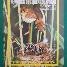 Guinea Ec. pasari - colita nedantelata nestampilata MNH - Timbre straine