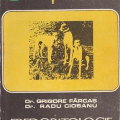 - Dr. Grigore Farcas, Dr. Radu Ciobanu