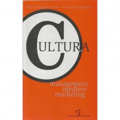 Cultura. Management, mediere, marketing - Milena Dragicevici-Sesici, Branimir Stojkovici