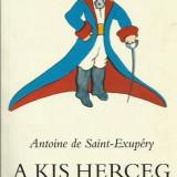 A kis Herceg - Antoine de Saint Exupery - Carte educativa