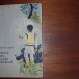 NESTOR URECHIA - ZINELE DIN VALEA CERBULUI ( editia 1966, cu ilustratii ) - Carte de povesti