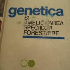 GENETICA SI AMELIORAREA SPECIILOR FORESTRIERE