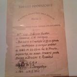 Brevet Provizoriu Medalia Barbatie si Credinta cls a 3-a cu spade WW2 1942 - Ordin/ Decoratie, Romania 1900 - 1950