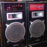 Boxe active cu bluetooth si microfon pentru petreceri  110 W, Boxe podea, 81-120W