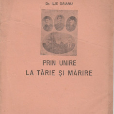 Dr. Ilie Daianu - Prin Unire la tarie si marire - Istorie