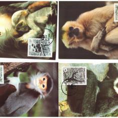Vietnam 1987 - Fauna WWF, maimute, serie maxime