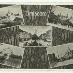 Timisoara 1940 - mozaic - Carte Postala Banat dupa 1918