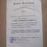 Brevet Provizoriu Steaua Romaniei cu spade si pamblica de Virtute clasa a 5-a - Ordin/ Decoratie, Romania 1900 - 1950
