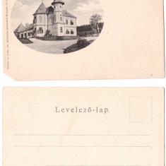 Birchis (Arad) aprox.1900 - Ilustrata necirculata - Carte Postala Transilvania pana la 1904