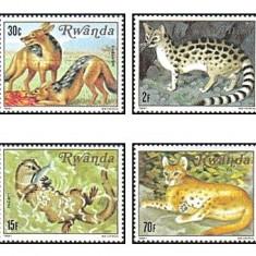 Rwanda 1981 - animale, serie neuzata