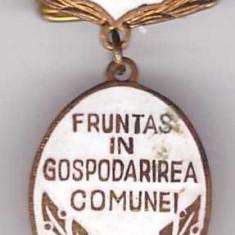 Insigna Fruntas in gospodarirea comunei 1972