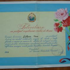 Diploma Felicitare cu pril. implinirii varstei de 18 ani, Comitetul UTC, 1966 - Diploma/Certificat