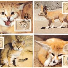 Yemen 1989 - Fauna WWF, pisici, vulpi, serie maxime