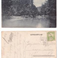 Baia Mare 1916 - Lacul din parc, ilustrata circulata