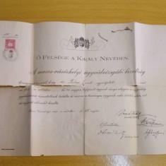 Diploma de avocat a dr. Emil Folea din 1913