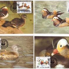 DPR Korea 1987 - Fauna WWF, serie maxime