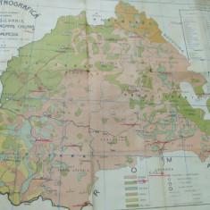 Transilvania Banat Crisana Maramures 1910 harta etnografica recensamant Ungaria - Harta Romaniei