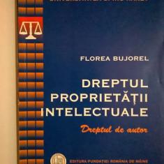 Florea Bujorel - Dreptul proprietatii intelectuale