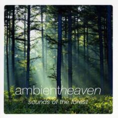Artisti Diversi - Sounds of the Forest ( 1 CD ) - Muzica Chillout