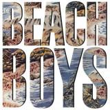 Beach Boys - Beach Boys -Hq- ( 1 VINYL ) - Muzica Pop
